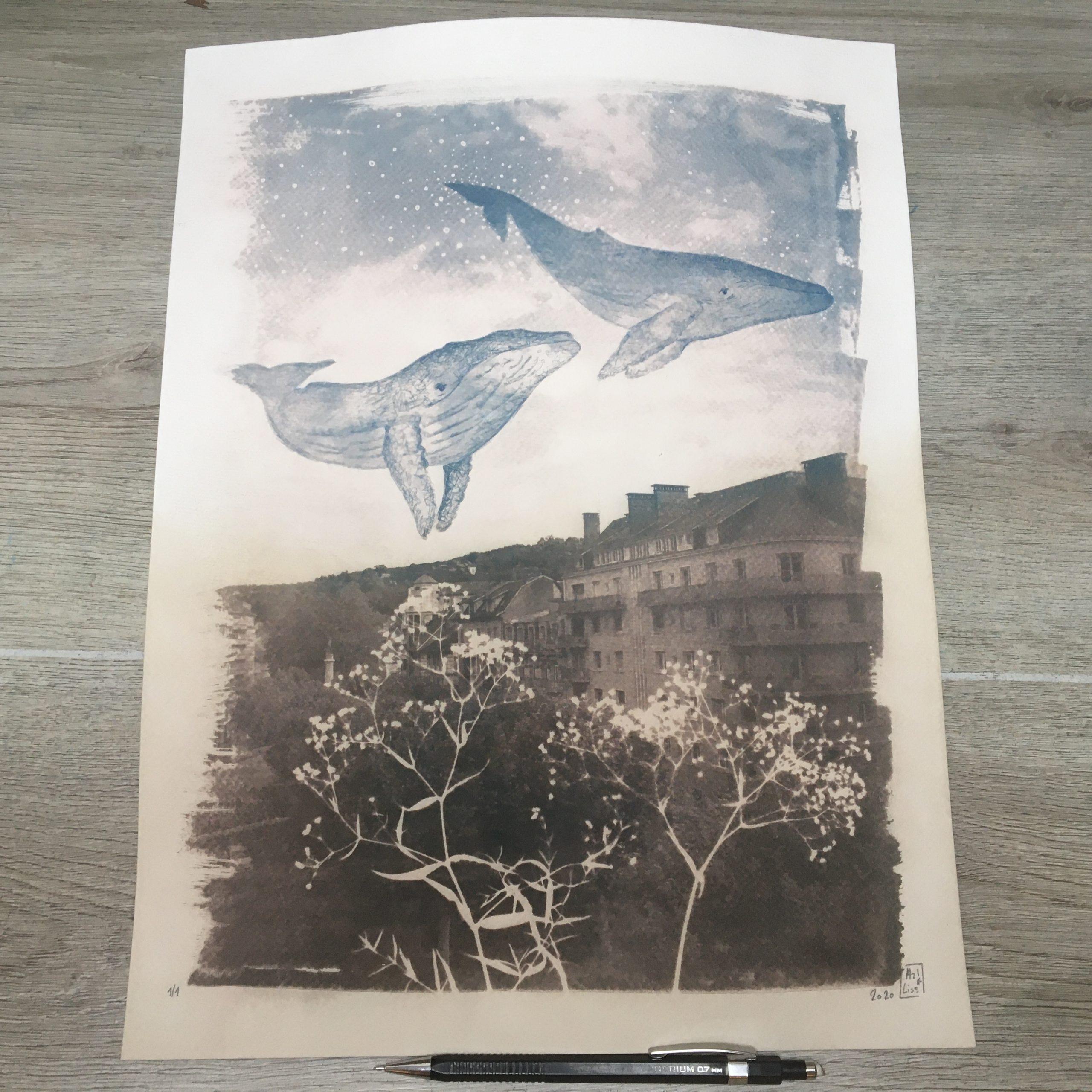 LinoLino | Linogravure et créations à partir d'impressions artisanales | Chambéry, France | Cyanotype baleines dans le ciel de Chambéry virage sépia partiel